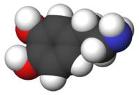 Dopamine : Neurotransmetteur impliqué dans les processus d'envie, de désir, de plaisir ... mais aussi de vomissements !
