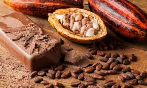 L'histoire des chocolats de Puyricard