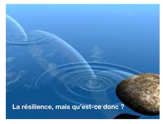Définition de la résilience dans le contexte de la pandémie liée au Covid-19
